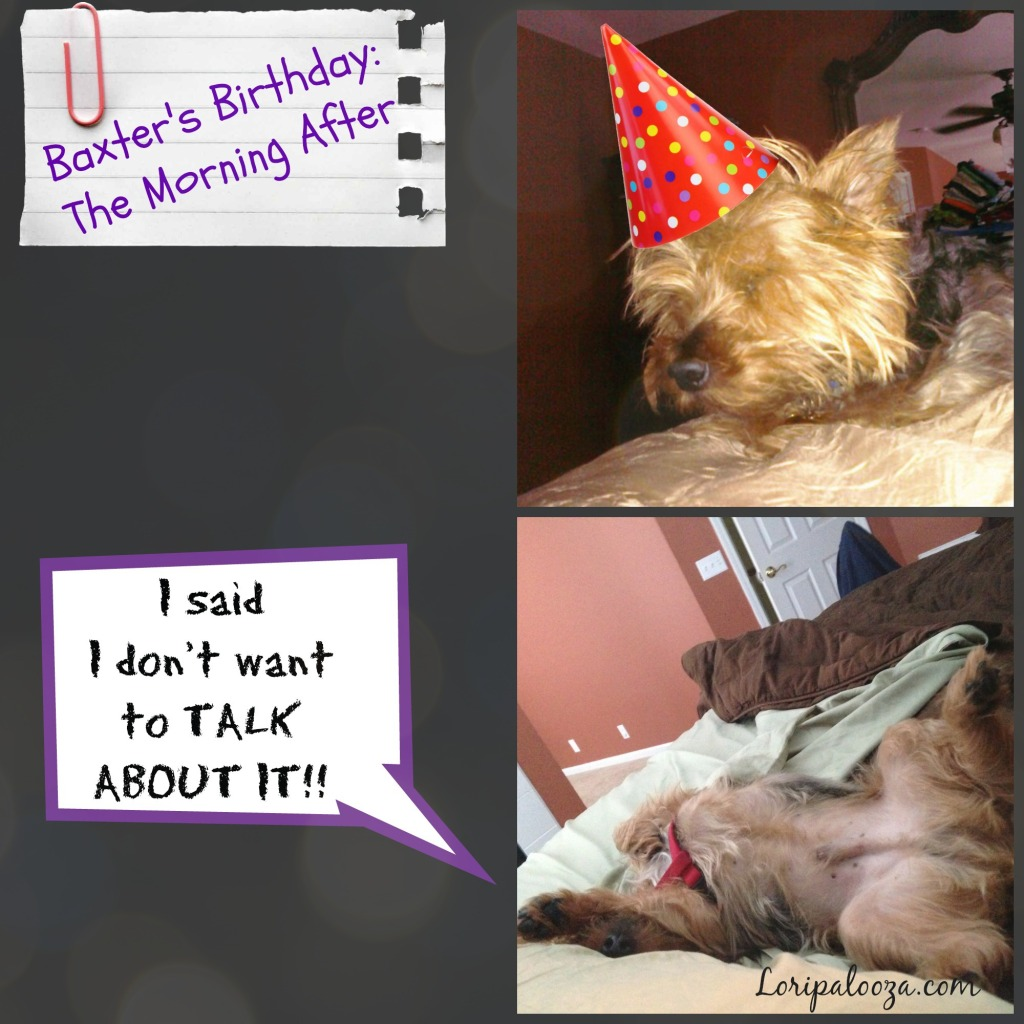 Baxter's Birthday